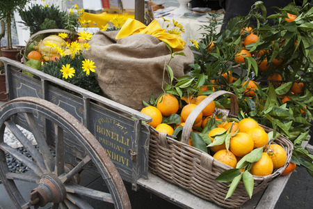basket citrus on an ancient chariot, with juta and flowers Stock Photo