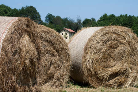 large haystacks round, in Italian country