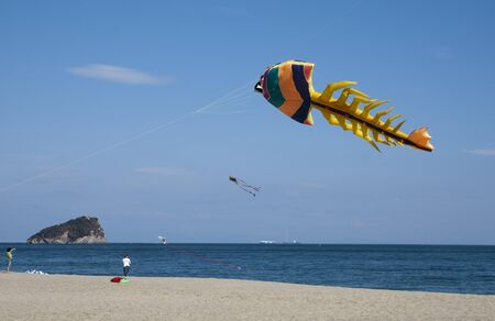 windy: colored kites in a windy day in ligurian riviera, italy Stock Photo