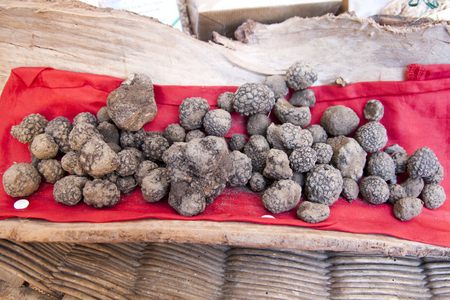 black truffles, in Italian country exhibition