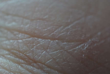 Human skin super macro texture object background