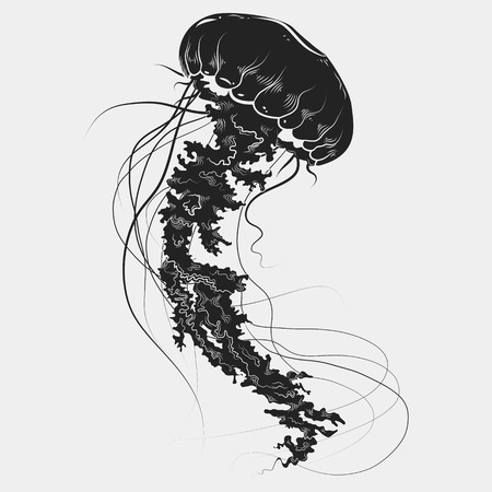 Hand drawn graphic jellyfish. Vector illustration. Tattoo sketch. Sea collection. Isolated on a white background.