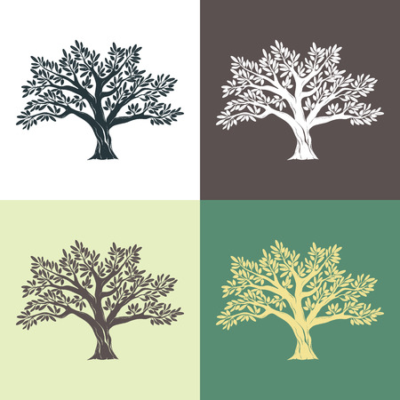 Hand drawn graphic argan trees set on different backgrounds. Vector illustration for labels, packs, logo design.