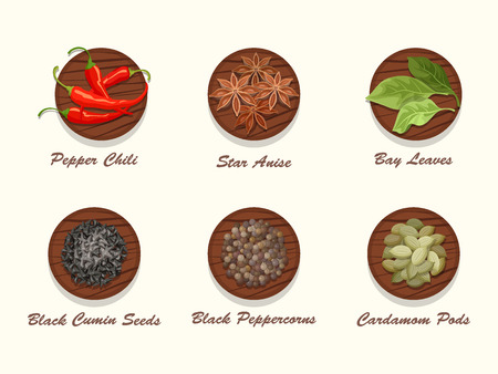 condiments: Set of different kinds of spices on wooden board. Collection of condiments - star anise, pepper chili, bay leaves, black cumin seed, black peppercorns and cardamom pods. Realistic vector illustration.