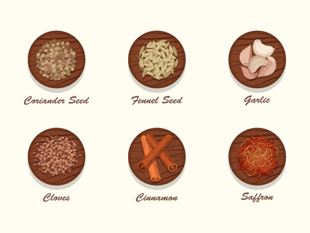 racy: Set of different kinds of spices on wooden board. Collection of condiments - coriander seed, fennel seed, garlic, cloves, cinnamon and saffron. Realistic vector illustration.