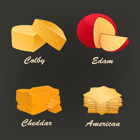 edam: Collection of different kinds of yellow cheese icon. Vector illustration include cheddar, colby, edam and american curd. Dairy set used for logo design, advertising cheese or restaurant menu.