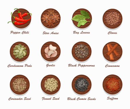 Different kinds of spices on wooden board. Realistic vector illustration. Condiment set used for advertising seasonings, or market and shop products. Illustration