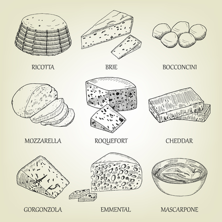 Set of different kinds of graphic cheese. Realistic vector sketch with dairy product. Curds collection used for logo design, recipe book, advertising cheese or restaurant menu. Banco de Imagens - 70040117