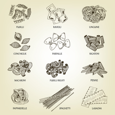 Collection of different sorts of macaroni. Illustration