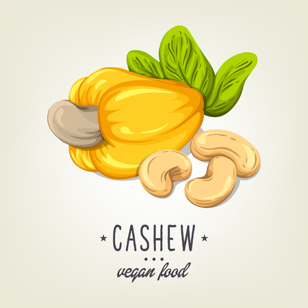 Colourful cashew icon isolated on background. Vector sketch of realistic nut with leaves and seeds. Drawn vegan plant good for recipe book, booklet, card, menu or banner design.