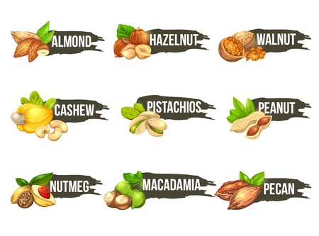 Nuts logo set. Vector labels with macadamia, pecan, walnut, cashew, peanut, almond, pistachios, nutmeg and hazelnut icons. Beautiful emblems isolated on background. Logo