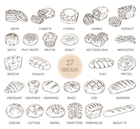 Isolated sketches of bread types.