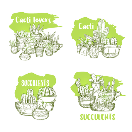 Set of isolated green sketches of cactus in pots. Hand drawn succulent plants illustration. Mexican cacti or cactaceae, desert flora print. Nature and gardening, decorative exotic plant theme Ilustração