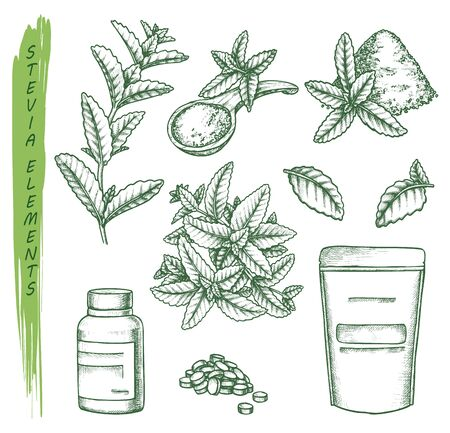 Sketch of stevia plant and pills, scoop and pack Illustration