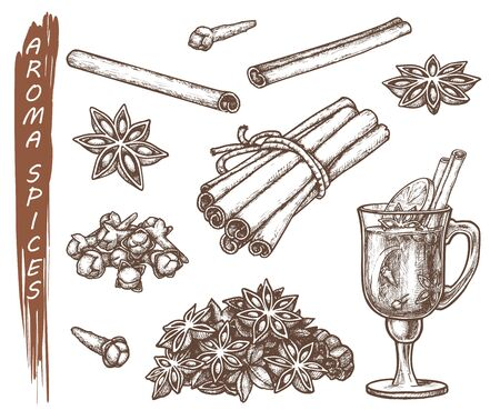 Set of isolated sketches for aroma spices. Anise star and clove roots, cinnamon and lemon at tea cup. Hand drawn spice food. Cooking and kitchen, herb and leaf, natural and aromatherapy icon. Vector