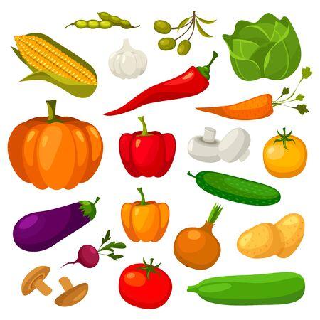 Icônes plates de légumes, légumes vectoriels, salade végétarienne et ensemble d'ingrédients de cuisine. Légumes bio de la ferme bio chou, poivre et ail, haricots, potiron et concombre, pomme de terre, haricots et champignons