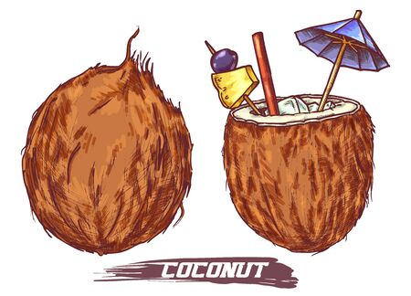 Vector nuts icons, Exotic tropical cocktail drink