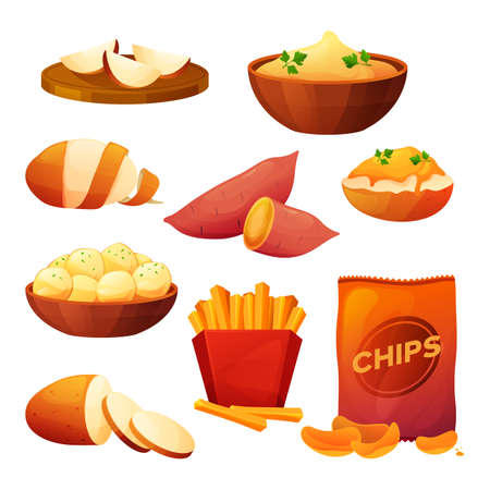 Potato food products, cook dishes, farm vegetables 向量圖像