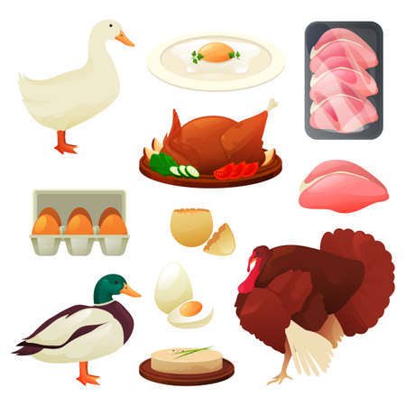 Poultry food products of turkey, duck and goose 向量圖像