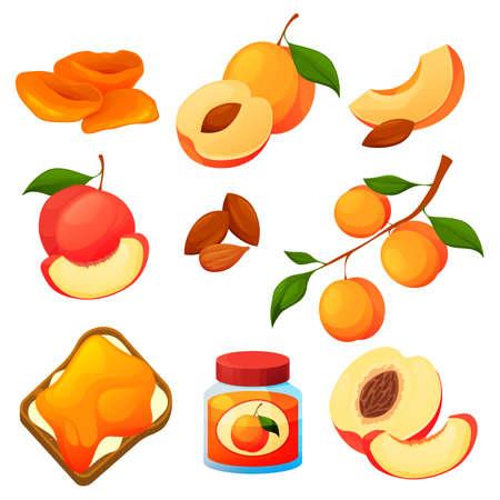Apricot food, fruit products, desserts jam, juice