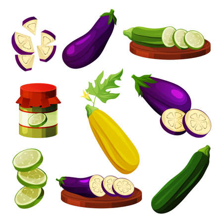 Set of eggplant and zucchini, vegetable products 向量圖像