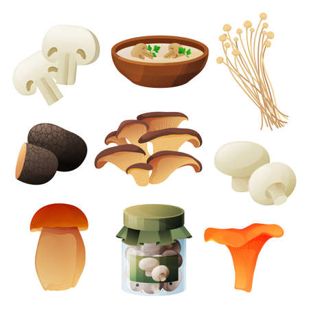 Mushrooms food products, soup or preserves package