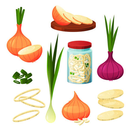Onion food vegetable products, cooking and eating