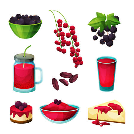 Set of blackcurrant and redcurrant berry products