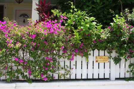 hemingway: Hemingway pissed here Sign Stock Photo