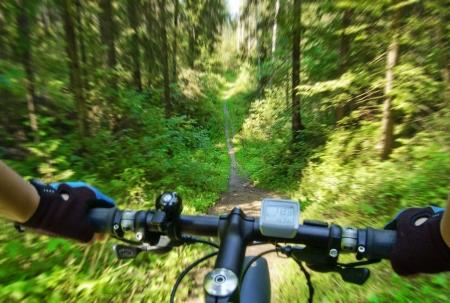 moto da cross: Mountain bike, venuta gi� il sentiero