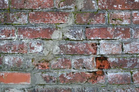 The old grunge brick wall for  backgrounds.