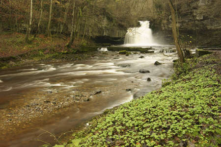 ure: West Burton Falls on the river Ure is to be found clos to the village green of West Burton  a popular location for artists and photographers