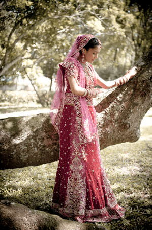 Young beautiful Hindu bride standing in the garden outdoors wearing traditional gown Stock Photo