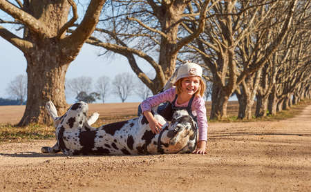 Young girl child petting playing with her dog great dane