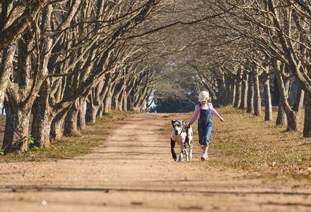Junges Mädchen mit ihrem Hund Dogge läuft. Mädchen und Hund läuft auf dem Bauernhof Straße von Bäumen gesäumten Allee Standard-Bild - 79148439