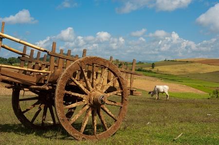 farm implements: Farm Cart in Shan State, Myanmar