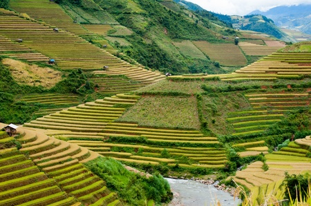 Mu Canh Chai Rice Terrace Stock Photo - 13150908