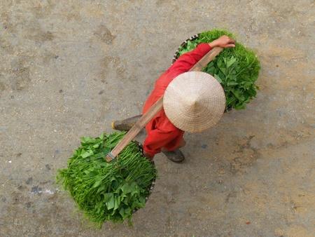 conical hat: Vegetable Seller, Sapa, Vietnam Stock Photo