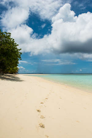 Pom Pom Island footprints