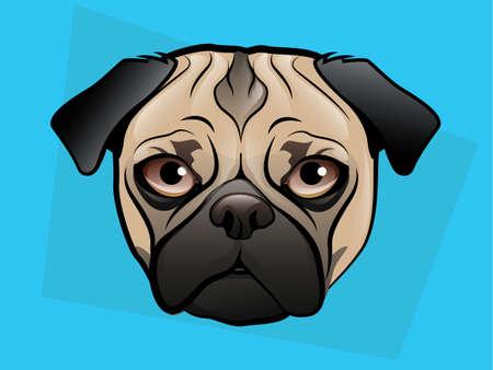 Cara de perro Pug sobre un fondo azul