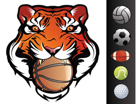 mascots: Tiger Sports Mascot with Ball in Mouth