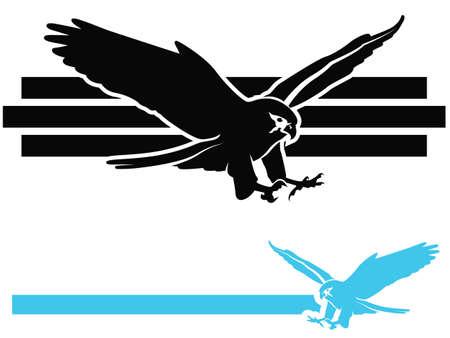 silhouette aquila: Bird of Prey  Falcon picchiata Vettoriali