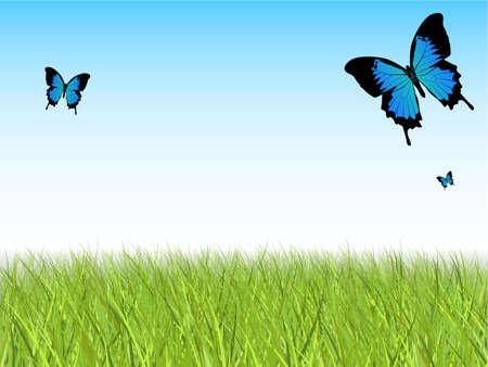 Blue Sky met gedetailleerde Gras en Vlinders
