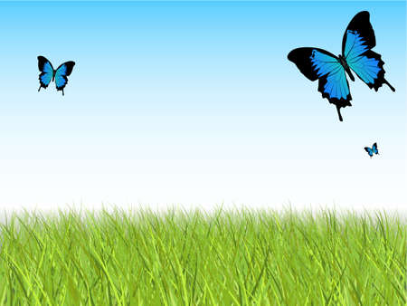 grass blades: Blue Sky with Detailed Grass and Butterflies Illustration