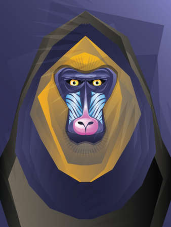 Mandril Monkey Illustration Vector