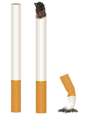 Cigarette Stages from New to Put Out Vector