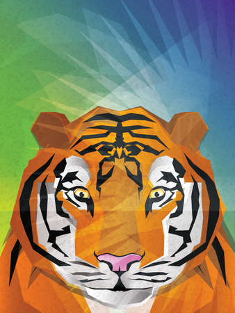 Tiger Illustration Vector