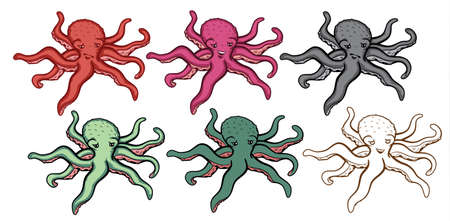 Octopus Illustration Set Stock Vector - 16165145