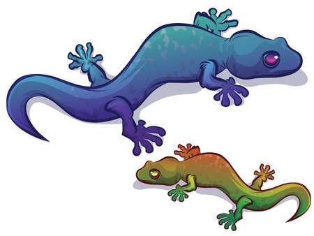 salamander: Gecko Salamander Lizard Illustration