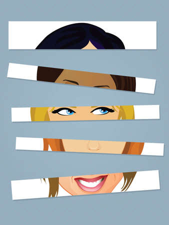 Faces Cut into Strips Vector